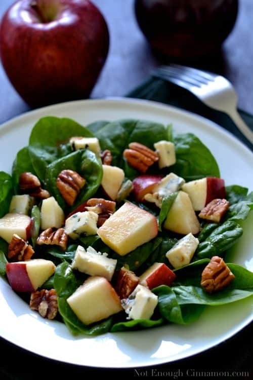 Blue Cheese, Apple and Pecan Salad with Pomegranate Dressing - NotEnoughCinnamon.com